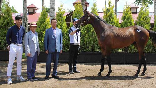 【競馬】池江父「シャムロッカーの2015はサトノダイヤモンドと同じか上」