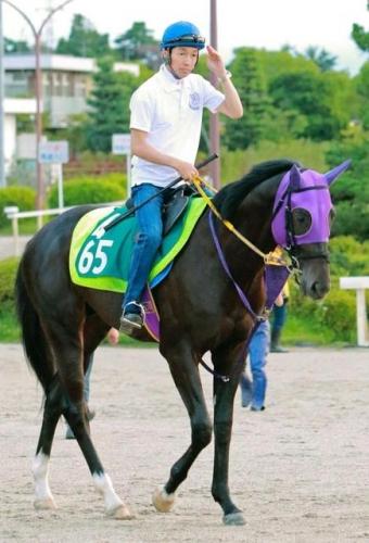 【競馬】サイレンススズカの再来2歳世代の最強馬!マイティドリームがついに7月17日中京5Rでデビュー!