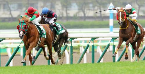 【競馬ネタ】今日の函館記念で軸にしたらセンスなしの馬TOP3