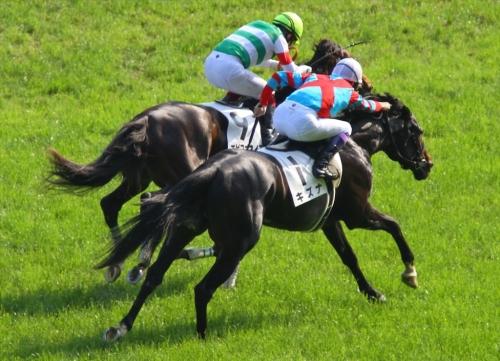 【競馬】究極の仕上げで勝利した馬といえば?