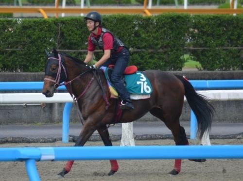 【競馬】ルメール「僕が知っている日本馬の中で最も強い馬はキングカメハメハ」