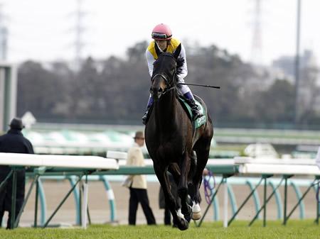 【競馬】リーチザクラウン社台スタリオンへ