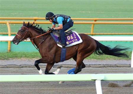 【札幌記念】モーリスVS駄馬16頭 さて、モーリスの単勝はいくら?
