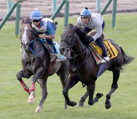 【競馬】今年の2歳馬ってレベル低すぎじゃね?昨年の今頃は重賞級何頭かいたやろ
