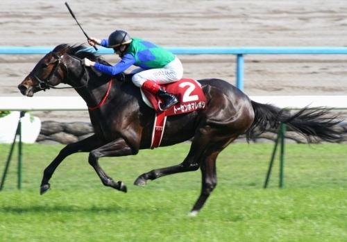 【競馬】トーセンホマレボシが種牡馬大失敗っぽい件