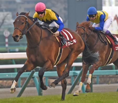【競馬】ルメール「マカヒキはニエル賞で3馬身、4馬身、5馬身差で勝つと思います」