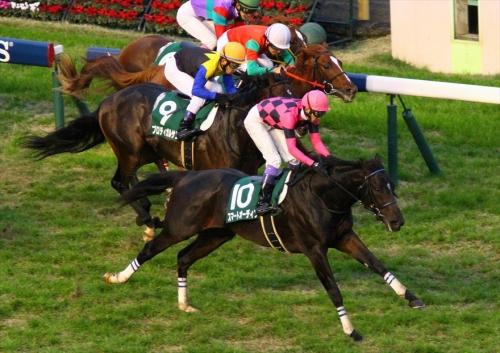 【競馬】毎日王冠予定だったスマートオーディンが放牧へ。池江さっそくやらかしかwww