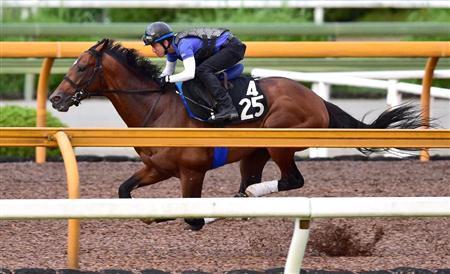 【競馬】サトノダイヤモンド「神戸新聞杯は勝つか負けるかじゃない、どう勝つかだ」