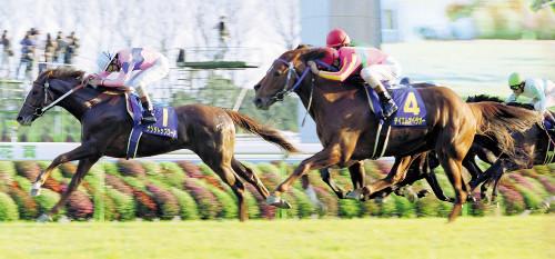 【競馬ネタ】オーナー「和田かえろ」 調教師「乗り替わりなら転厩」 オーナー「ぐぬぬ…」