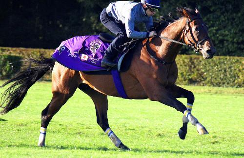 【競馬ネタ】日本馬が凱旋門賞勝ったら起こりそうなこと