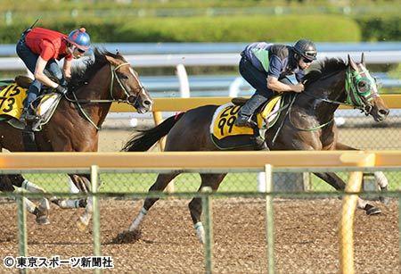 【毎日王冠】ルージュバックさん(ノーザンF天栄所属)、大竹厩舎で体調を崩す