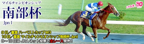 【競馬】10月10日(祝・月)マイルチャンピオンシップ南部杯(JpnI、3歳以上、ダート1600m)