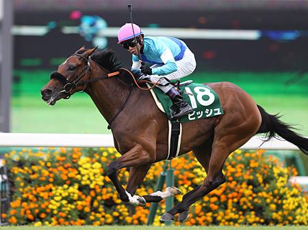 【競馬】今って日本競馬のレベルめちゃくちゃ下がってない?