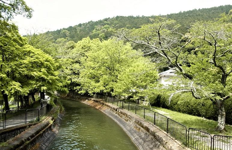山科付近の琵琶湖疎水