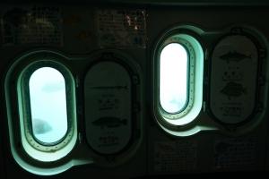 DSC00084.jpg