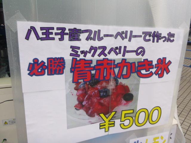 P1040183.jpg