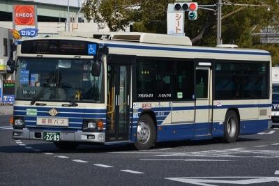 DSC_3245-m.jpg