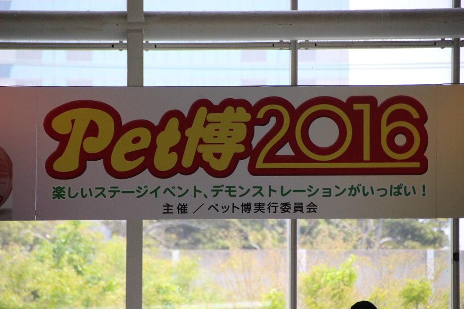 20160504-01.jpg