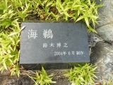 JR泉駅 海鵜 タイトル