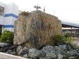 JR泉駅 海鵜