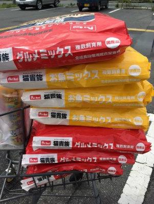 2016.8.21~22 美穂ちゃん 浪江・都路 1