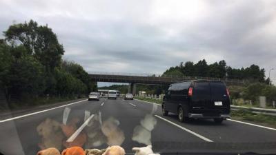 2016.10.10 くにさんチーム 浪江・都路 2