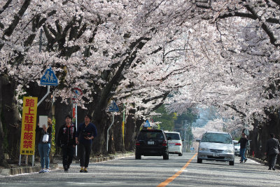 2016.4.9  被災地ツアー ぽこ&田中さん&まちさん 7