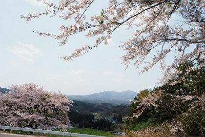 2016.4.26  葛尾村・都路 1