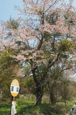 2016.4.26 葛尾村・都路 2