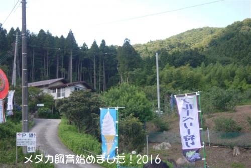 P1120675.jpg