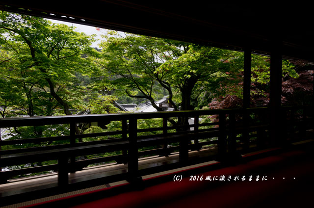 京都・柳谷観音 楊谷寺 上書院から見る浄土苑(名勝庭園)5