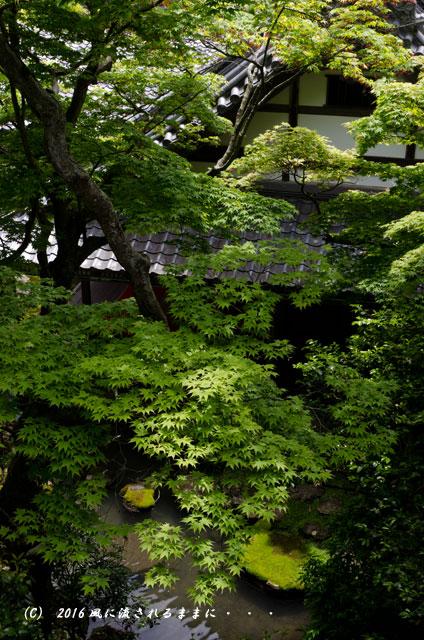 京都・柳谷観音 楊谷寺 上書院から見る浄土苑(名勝庭園)10