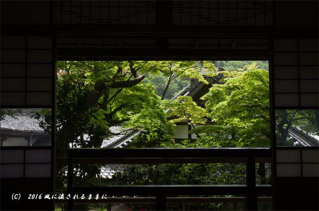 京都・柳谷観音 楊谷寺 上書院から見る浄土苑(名勝庭園)12