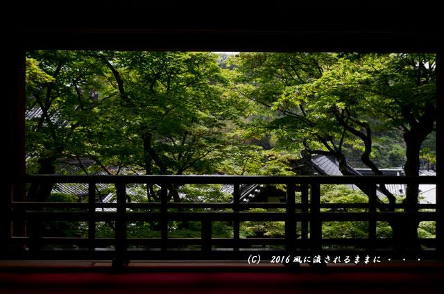 京都・柳谷観音 楊谷寺 上書院から見る浄土苑(名勝庭園)2