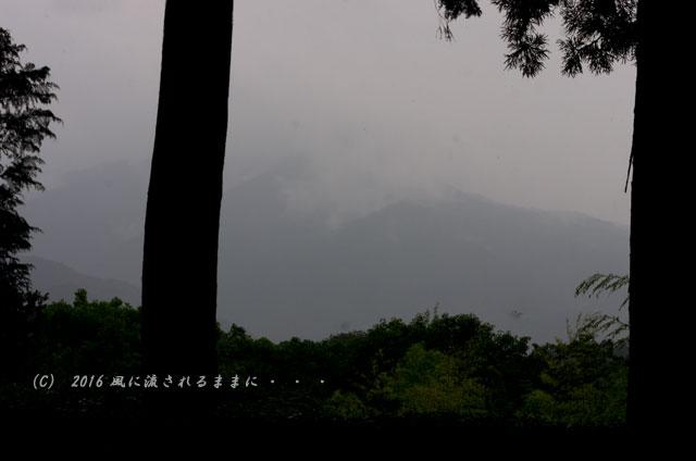 2016年6月19日撮影 京都・圓通寺 雨の借景庭園6