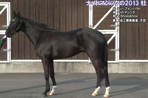 【悲報】皐月賞当日の阪神5レースに別の生き物フォイヤーヴェルク涙の出撃