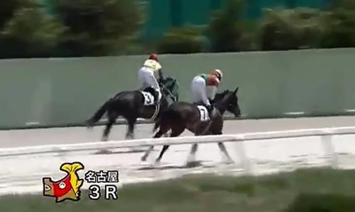 虐待騎手 丹羽2