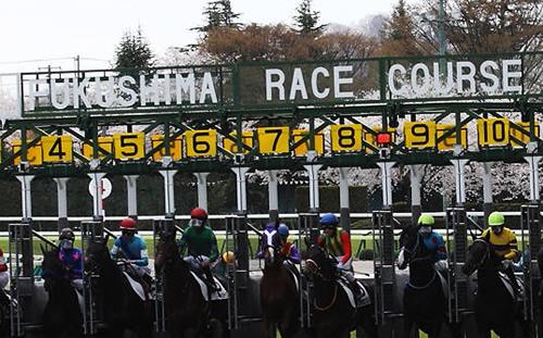 【福島牝馬ステークス 枠順決定】8枠16番シャルール、2枠3番アースライズ