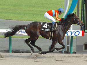 ローマンレジェンド引退 誘導馬へ