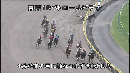 藤田菜七子 落馬2