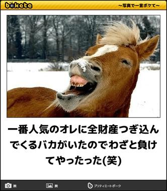 本日、京都の午前のレース一番人気全滅手