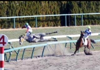 競馬 おもしろ画像16
