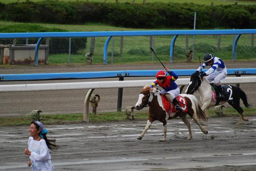 競馬 おもしろ画像27