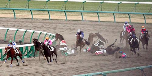 競馬 おもしろ画像34