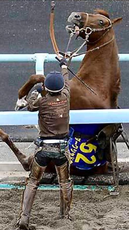競馬 おもしろ画像37