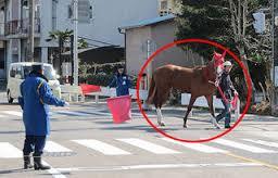 競馬 おもしろ画像7