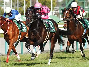【京都新聞杯】ダービー激走馬を探す注目レース