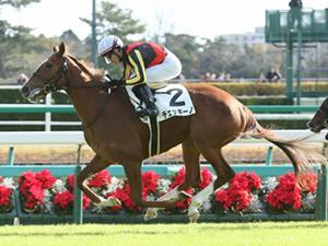 【優駿牝馬】チェッキーノ、戸崎圭太騎手との新コンビでオークスへ