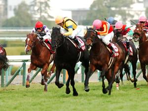 【京王杯スプリングカップ】混戦波乱の予感。騎手も豪華で楽しみな重賞レース