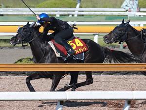 【優駿牝馬】アドマイヤリードが追い切りでおかしな時計出してる件
